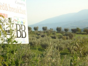 Bed And Breakfast Torretta Controguerra - Tra mare e monti di Teramo