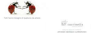 Creazione foto di copertina Facebook, diario Facebook personalizzato in Abruzzo - Coccinella