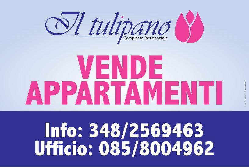 Stampa striscioni occhiellati in Pvc Giulianova Teramo Abruzzo