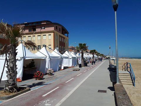 Allestimento per eventi in Abruzzo e Marche