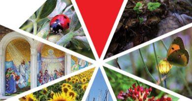 Guida Culturale Turistica Teramo 2019